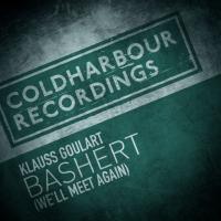 Klauss Goulart - Bashert